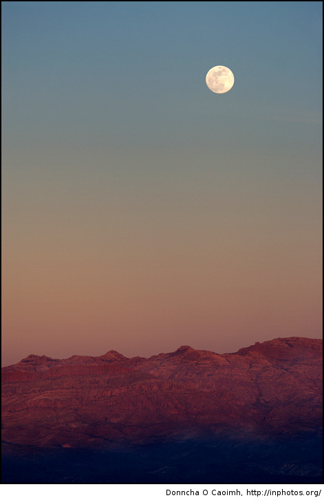 Moonlit Arizona