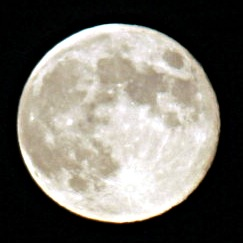 2005-11-19_mg_5765-m.jpg