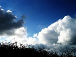 photoblog-20050313
