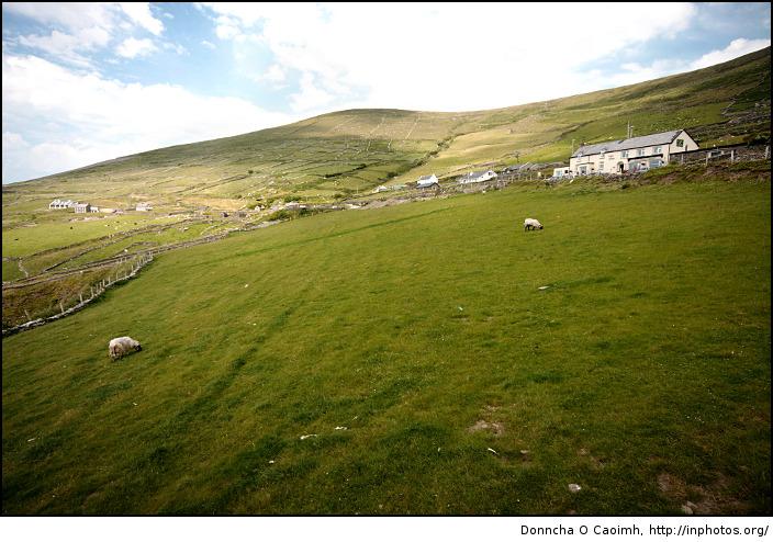 The Fields of Slea Head