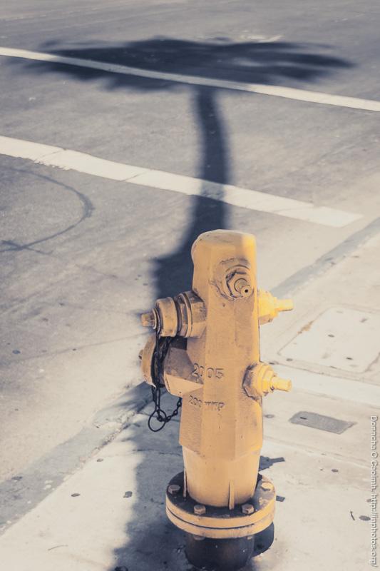 Hydrant in Shadow
