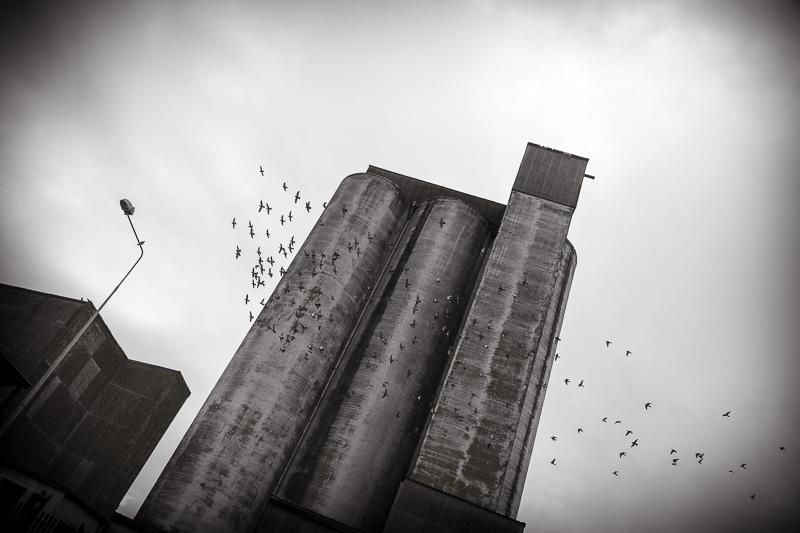 Cork Docklands Grain Silo