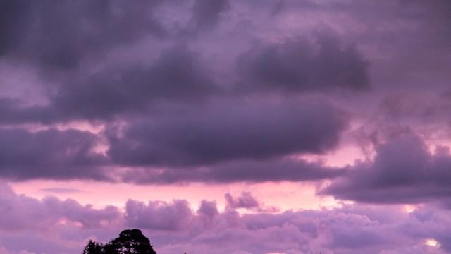 A Purple Sunrise