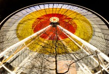The Big Wheel and the Tree