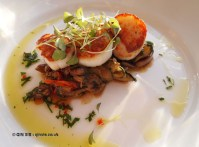 Hand dived Cornish scallops at Fifteen, Cornwall