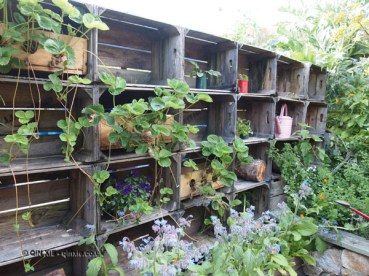 Garden shelves at River Cottage Axminster