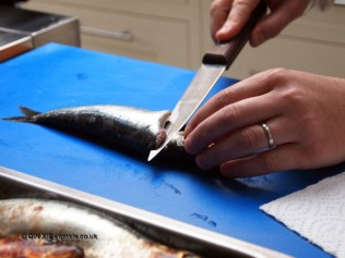 Filleting sardines at Fish in a Day, Food Safari