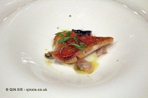 Red mullet - sautéed with lemon purée, lemon confit, The Yeatman, Porto