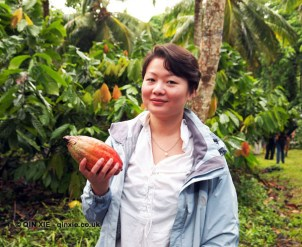 Qin Xie at Loma Sotavento Cacao plantation, Dominican Republic