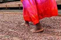 Trampling cocoa beans, Belmont Estate, Grenada