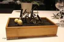 Frozen olive on black olive soil, Azurmendi