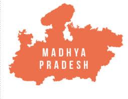Madhya Pradesh ,Death,Crime,PUBG