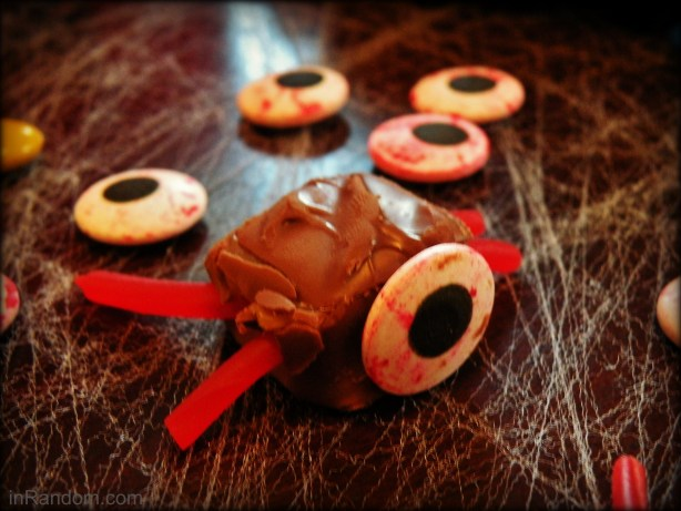 chocolate bug #shop