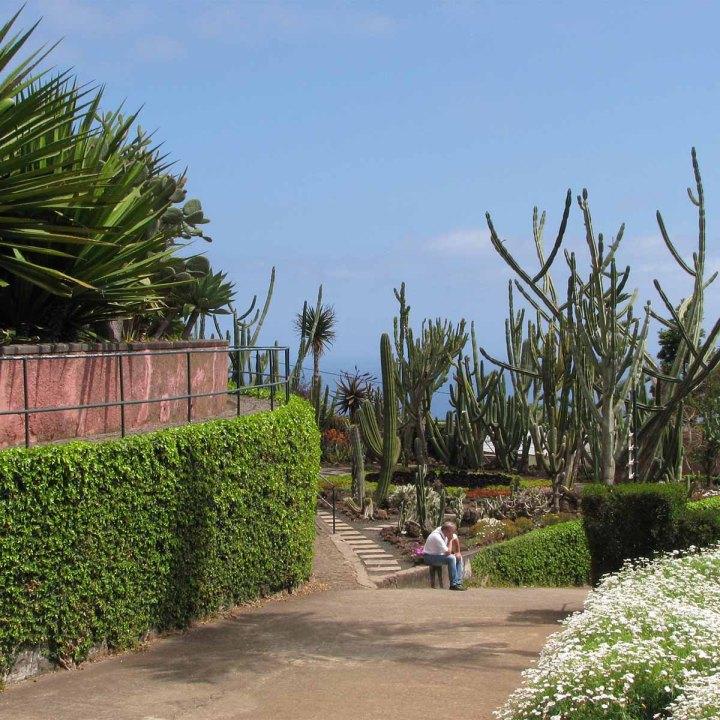 Funchal, côté jardins : comme une impression d'Eden