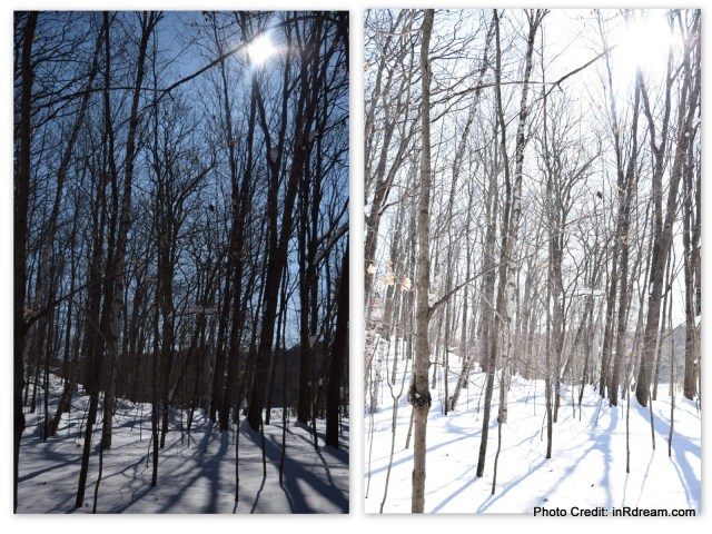 Family Day weekend 2015 Ontario Pioneer Camp. in R Dream family, Canadian Travel Blogger, Nikon picture comparision