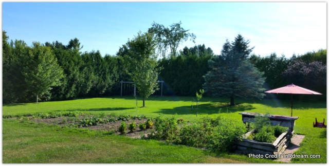Country garden, Big Vegetable garden