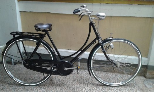 Sepeda Gazelle Seri 11