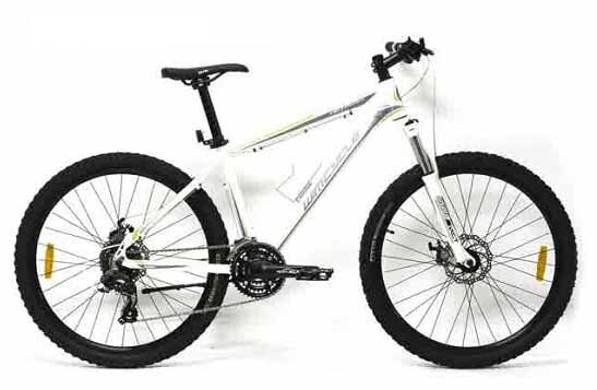 Sepeda downhill Wimcycle Roadchamp 2.0
