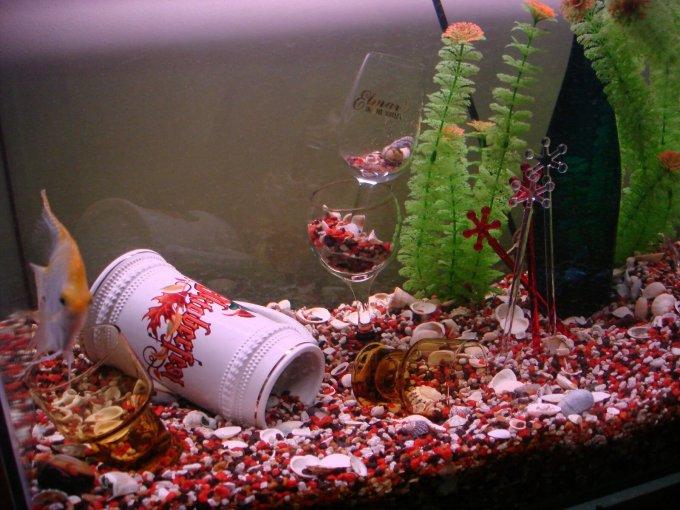 Hiasan Aquarium dari Bahan Rumah Tangga