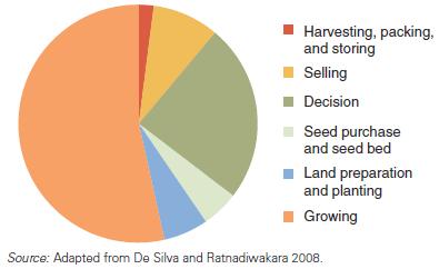 Gambar 3.2: Biaya Pencarian Informasi menurut Tahap Kegiatan Pertanian