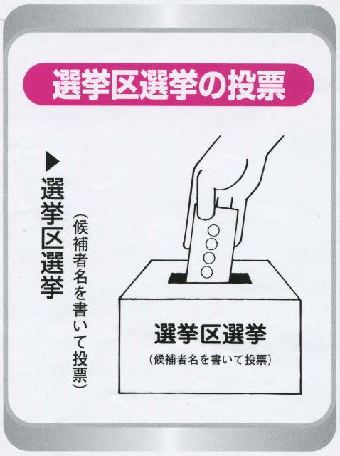 投票用紙の書き方