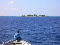 An uninhabited picnic island seen from afar on a vessel.
