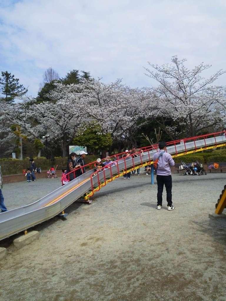 Best of Saitama Maruyama Park   AGEO