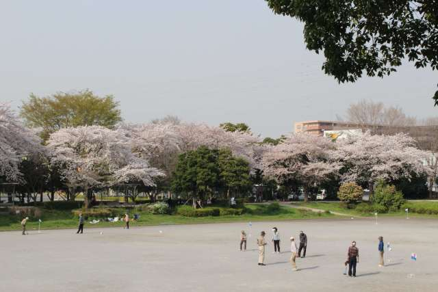 Mihashi park open space for playing ball