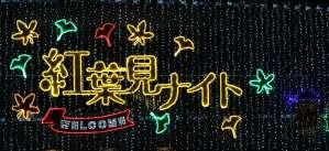 Shinrin Park Autumn Leaves Night Illumination sign over the central gate Autumn Leaves Shinrin
