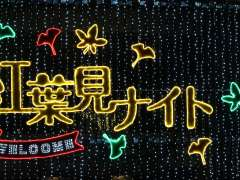 Shinrin Park Autumn Leaves Night Illumination sign over the central gate