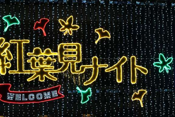 Shinrin Park Autumn Leaves Night Illumination sign over the central gate Autumn Leaves Shinrin