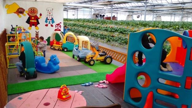 Strawberry picking Saitama close to Tokyo with play area