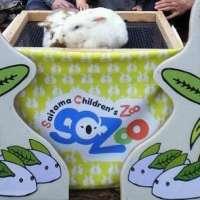 Saitama Children's Zoo 2021 | HIGASHIMATSUYAMA