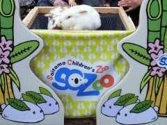 Saitama Children's zoo
