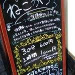 Cat Cafe Neko Katsu Kawagoe