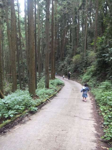 gojyou-waterfall-hidaka-2