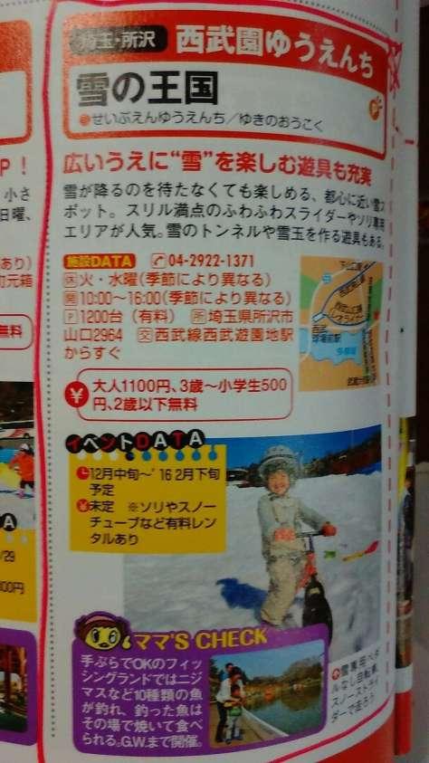 Snow Kingdom Seibu
