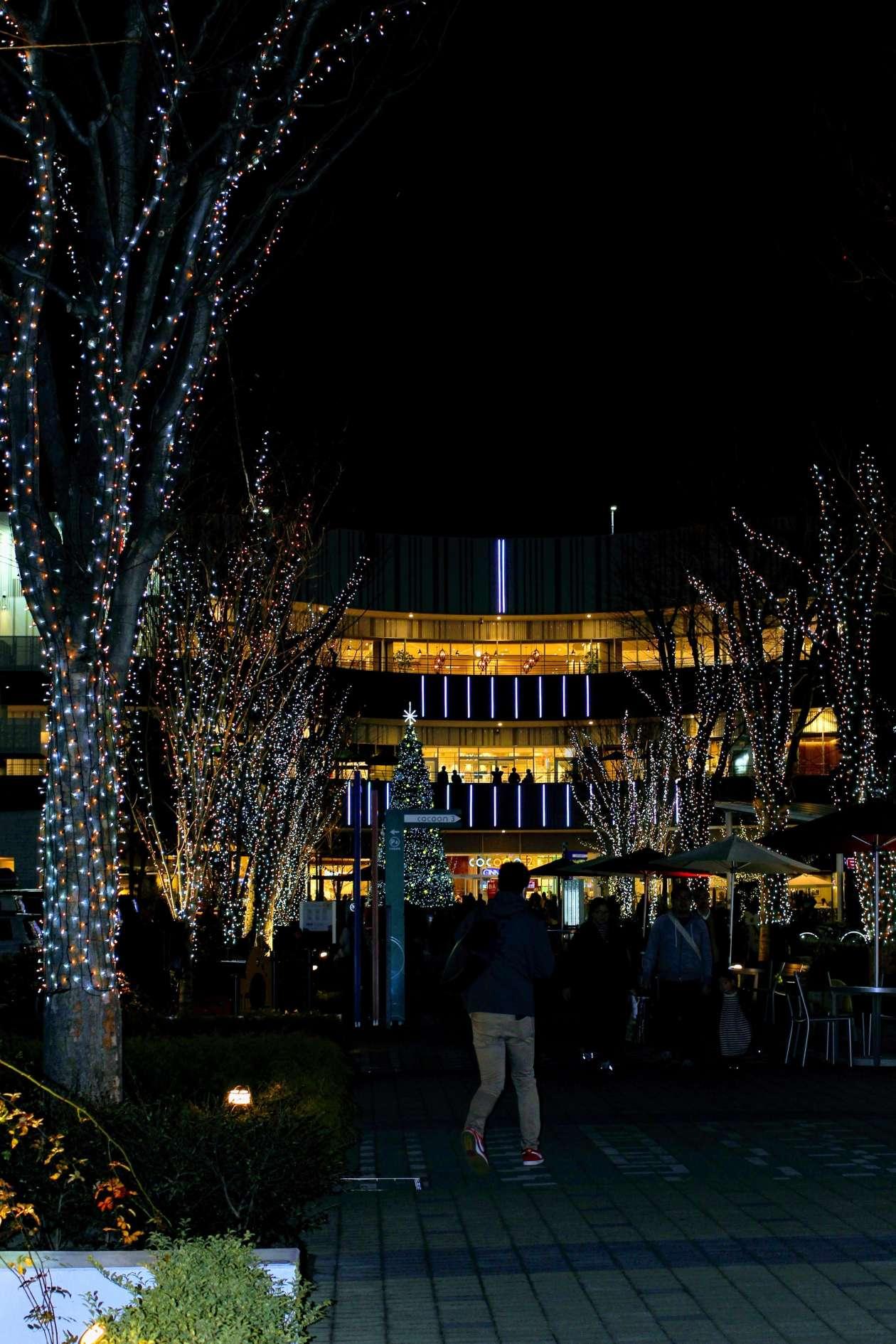 Cocoon City Night Illumination