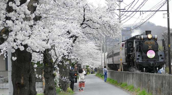 Steam Locomotive Paleo Express | KUMAGAYA TO CHICHIBU