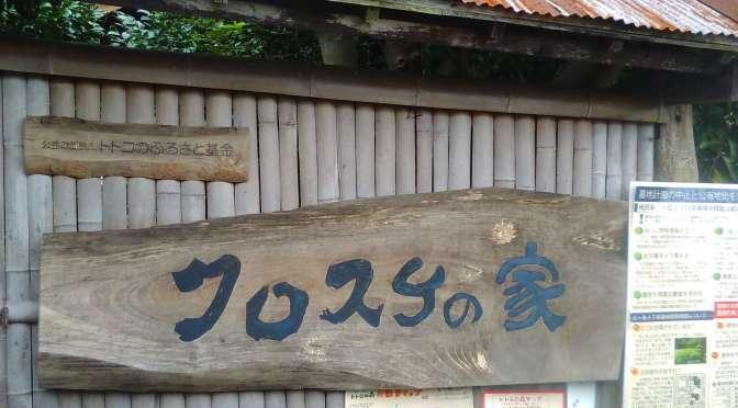 The Homeland of Totoro @ Sayama Hills | TOKOROZAWA