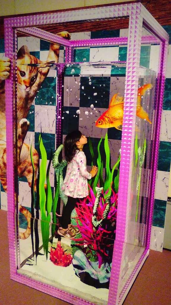 Kawagoe 3D Trick Art Museum | KAWAGOE