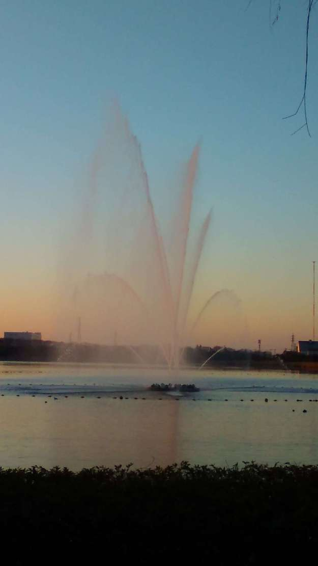 Fountain Show at Kuki Shobu Park