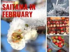 Saitama February
