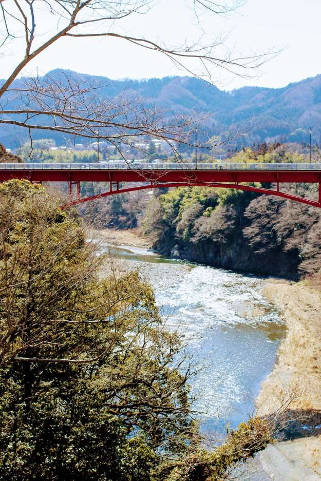 View of the Tama river and Jindai bridge from Rose Town Tea Garden