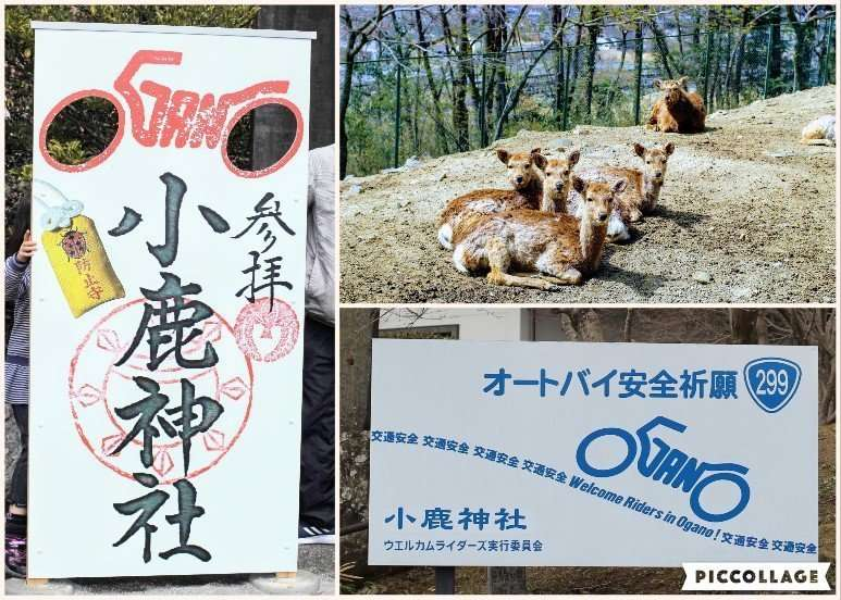 Ogano Deer Park and Biker's shrine