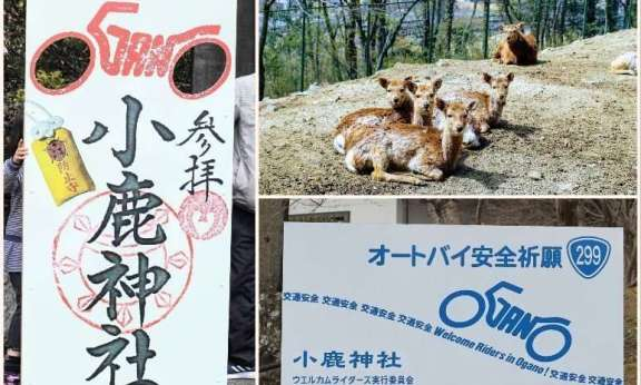 Ogano deer park and shrine in the biker town of Ogano in Chichibu Saitama