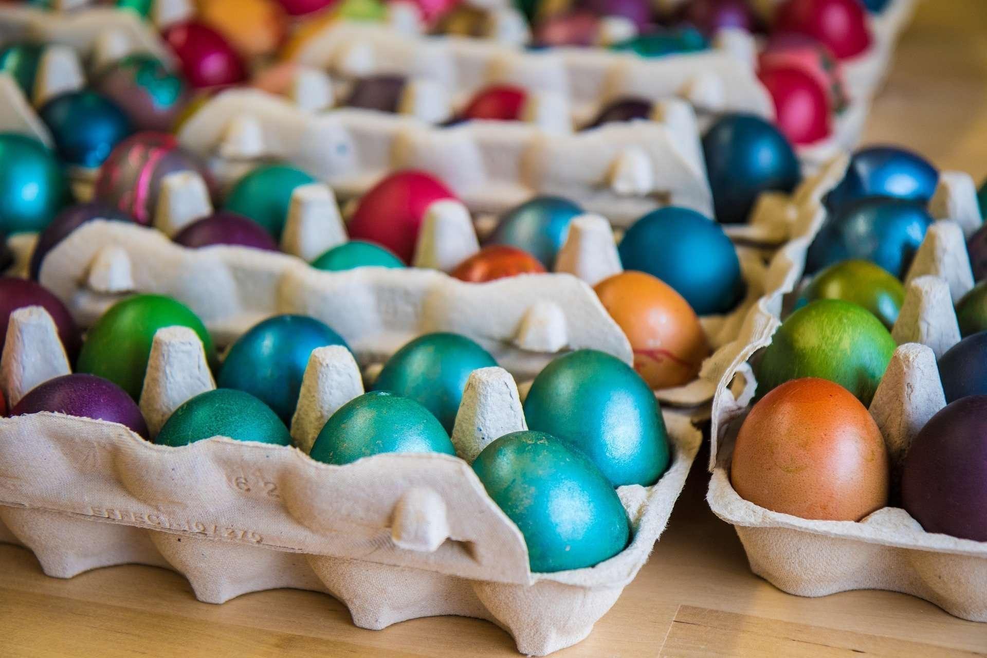 Egg painting saitama children's zoo easter event