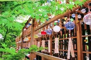 2019 Wind chimes at Hikawa Shrine | KAWAGOE