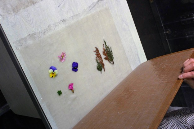 washi making washi workshop tokigawa