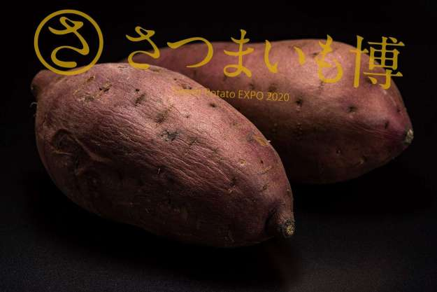 Sweet Potato Expo